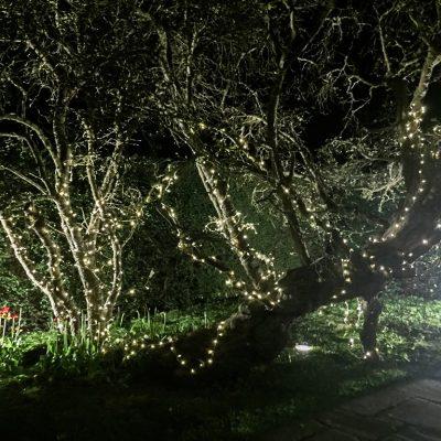 fairy light wedding event lighting