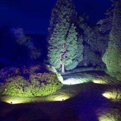 Highley Manor, professional wedding lighting, tree uplight